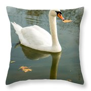 White Swan With Reflection Throw Pillow