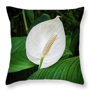 White Tail-flower Throw Pillow