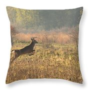 White Tail Morning Throw Pillow