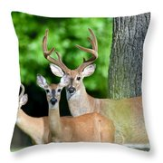 White-tailed Deer Family Throw Pillow