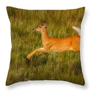 White-tailed Doe Leaping Throw Pillow