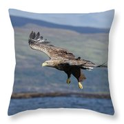 White-tailed Eagle Over Loch Throw Pillow