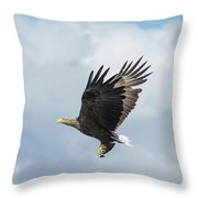 White-tailed Eagle With Fish Throw Pillow