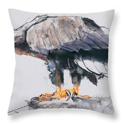 White Tailed Sea Eagle Throw Pillow