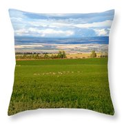 White Tails In The Field Throw Pillow