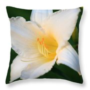 White Temptation Lily Throw Pillow