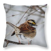 White Throated Sparrow 2 Throw Pillow