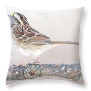 White-throated Sparrow Looking Skyward Throw Pillow