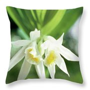 White Thunia Throw Pillow