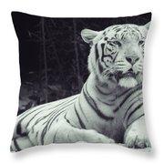 White Tiger 16 Throw Pillow