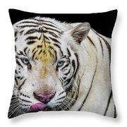 White Tiger Closeup Throw Pillow