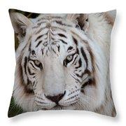 White Tiger Portrait Throw Pillow