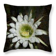 White Torch Cactus  Throw Pillow