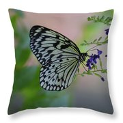 White Tree Nymph Polinating Purple Flowers Throw Pillow