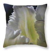 White Tulip 2 Throw Pillow