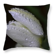 White Tulip Macro Throw Pillow