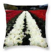 White Tulip Rows Throw Pillow