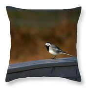 White Wagtail 1 Throw Pillow