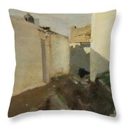 White Walls In Sunlight Throw Pillow