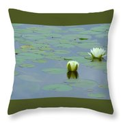 White Water Lilies Throw Pillow