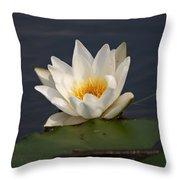 White Waterlily 1 Throw Pillow