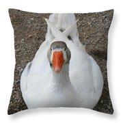 White Wild Duck Sitting On Gravel Throw Pillow