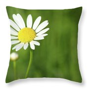 White Wild Flower Spring Scene Throw Pillow
