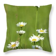 White Wild Flowers Nature Spring Scene Throw Pillow