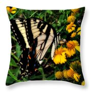 White Wing Butterfly Throw Pillow