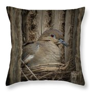 White-winged Dove - Nesting Throw Pillow