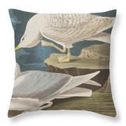 White-winged Silvery Gull Throw Pillow
