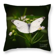 White Wings Of Wonder Throw Pillow
