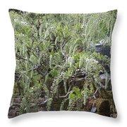 White Wisteria, Sissinghurst Throw Pillow
