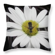 White With Bee Throw Pillow