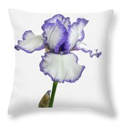 White With Purple Trim Bearded Iris  Throw Pillow