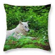 White Wolfe Throw Pillow
