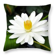 White Wonder Throw Pillow