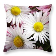 White Yellow Daisy Flowers Art Prints Pink Blossoms Throw Pillow