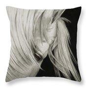 Whitefall Throw Pillow by Pat Erickson