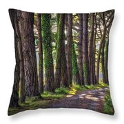 Whiteford Burrows Woods Throw Pillow