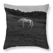 Whitehorse Throw Pillow