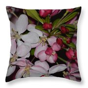Whites And Reds Throw Pillow