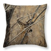 Whitetail Buck Square Throw Pillow