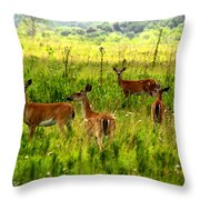 Whitetail Deer Family Throw Pillow