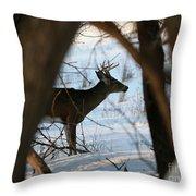 Whitetail Deer Threw The Trees Throw Pillow