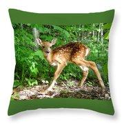 Whitetail Fawn Throw Pillow