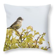 Whitethroat  Throw Pillow