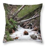 Whitewash Throw Pillow