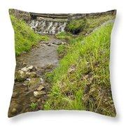 Whitewater Bridge And Dam Scene 13 Throw Pillow