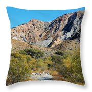 Whitewater Reserve Throw Pillow
